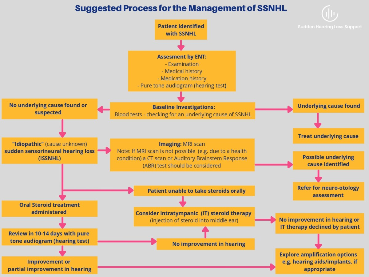 Flow diagram showing the suggested process for the management of sudden sensorineural hearing loss (SSNHL).